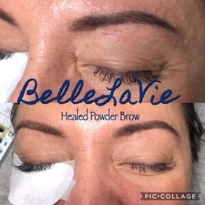 Healed Microblading/Powder Brows 4