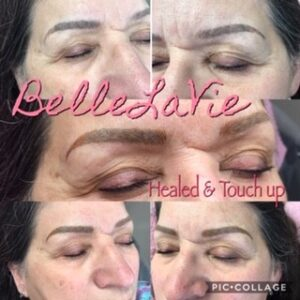 Healed Microblading/Powder Brows 6
