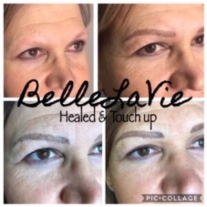 Healed Microblading/Powder Brows 7
